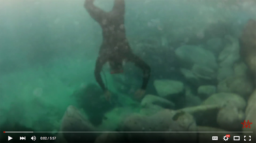 "screenshot of video "" How to Catch and Eat Sea Urchins"""