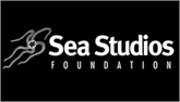 Sea Studios Foundation logo